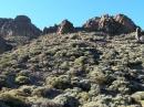0632_Teide