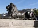 116-nelson-spomenik
