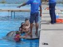 999c-plivanje-sa-delfinima