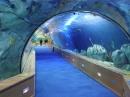 999m Oceanografic